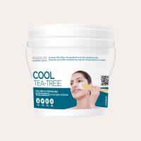 Lindsay – Premium Cool Tea Tree Modeling Mask